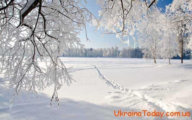 білий сніг