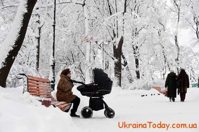 м'які зими