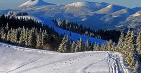 велика кількість снігу
