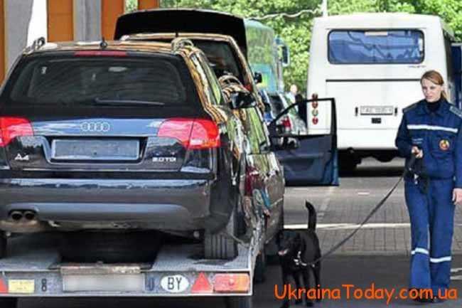 машини на митниці і собака