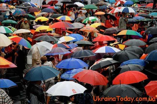 много зонтиков
