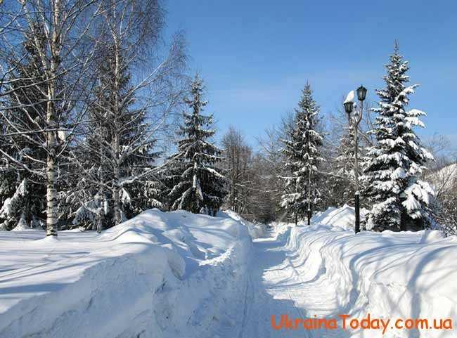 Яка буде погода в лютому 2019 року в Україні