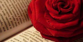 День спогадів улюблених книжок
