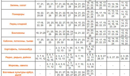 Посівний календар огородника на липень 2018 року