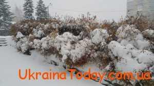 Зима в листопаді